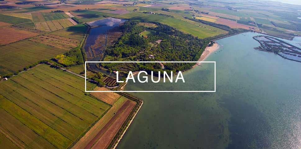 Trattoria-alla-buona-vite-Grado-Aquileia-Trieste-Mare-Laguna-Cicloturismo-lagina-di-barbana