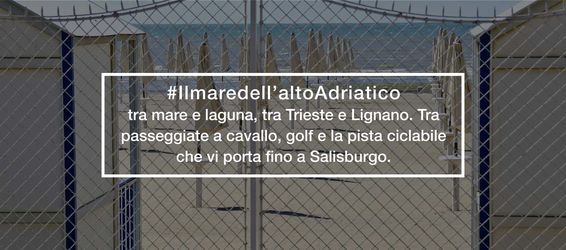 Trattoria-alla-buona-vite-Grado-Aquileia-Trieste-Mare-Laguna-Vacanze-Friuli-Venezia-Giulia