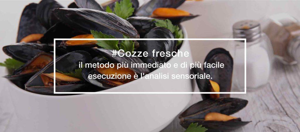 Trattoria-alla-buona-vite-Grado-ristorante-specialità-di-pesce