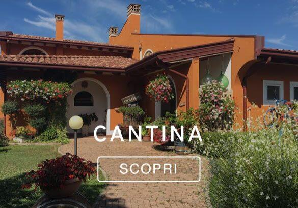 Trattoria-alla-buona-Vite-Specialita-pesce---Grado-Aquileia-Belvedere-di-Grado-Cantina-vini-friulani